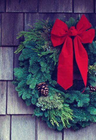 Potted Plant Gifts for Christmas